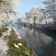 Cruise the canals over Christmas