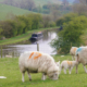 Take a Canal Boat Holiday this Easter
