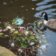 Ways to reduce plastic waste afloat